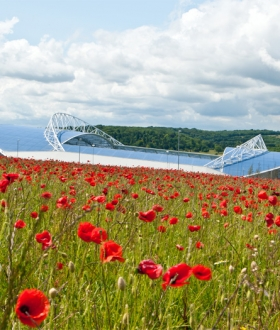 Brighton and Hove Albion Football Club